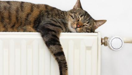 Chauffage domestique: bientôt un écolabel