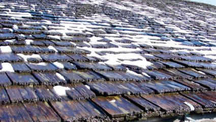 Quelles toitures écologiques?