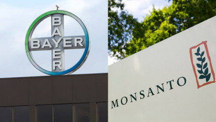 Bayer veut racheter Monsanto