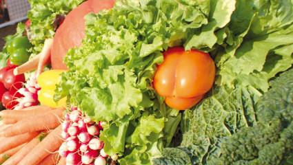 Conserver les fruits et légumes frais