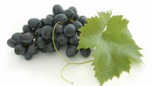 Le raisin, antioxydant à tous grains