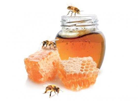 Le miel, de l'or pour notre santé !