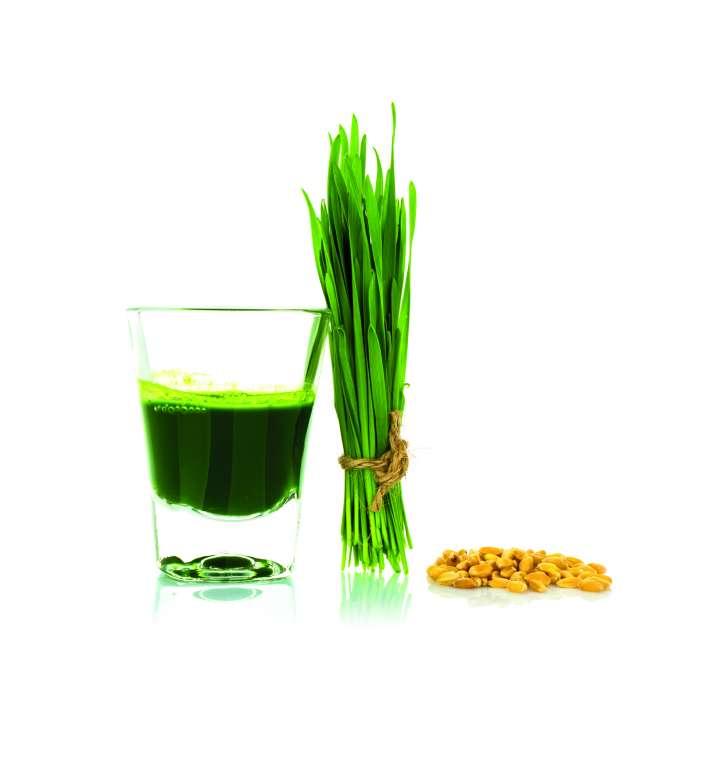 Boire vert avec le jus d'herbe de blé