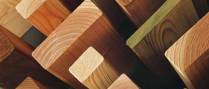 Bois, cellulose, paille : du nouveau du côté desmatériaux naturels