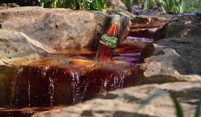 Coca-Cola à la stevia ? Du greenwashing qui fait pschitt !