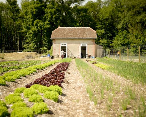 Guilhem Chéron et Maxime de Rostolan : cultivateurs de changement