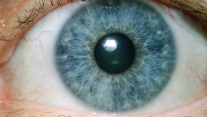 Les yeux, une fenêtre sur notre état de santé