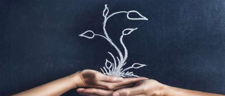 Se former à la naturopathie