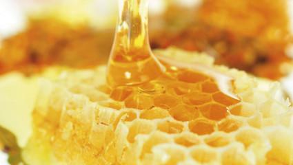 À chacun son miel : des critères pour le choisir