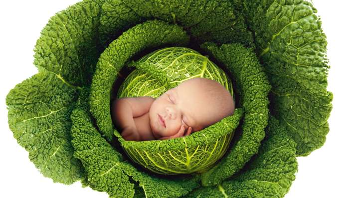 On naît comme on mange