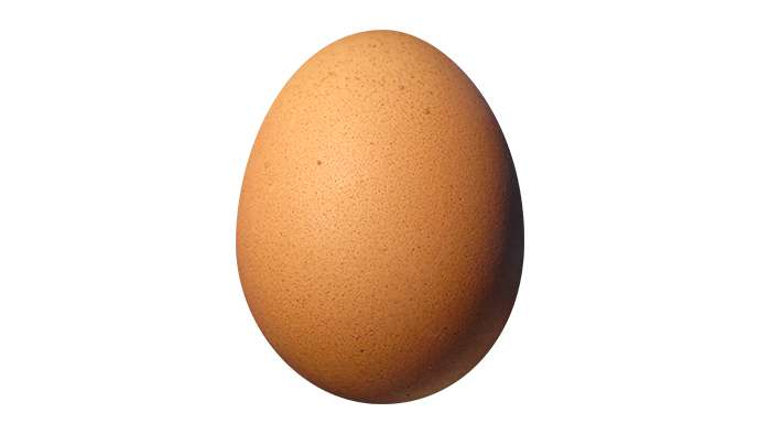 Pour Pâques, un oeuf plus bio
