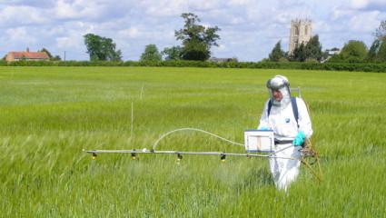 Glyphosate de Monsanto : la Commission reporte sa décision pour la deuxième fois