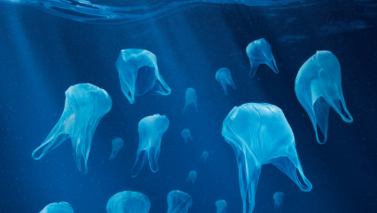 Documentaire : en quête de la planète Plastique