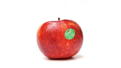 La pomme Juliet, unique et 100 % bio