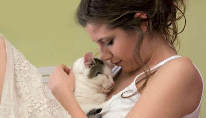 Et si les chats pouvaient soigner notre morosité ?