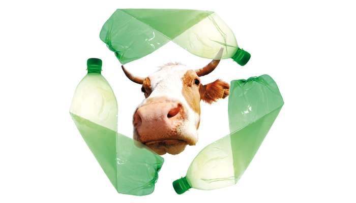 Les abattoirs source de plastiques verts