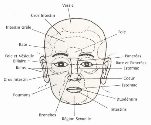 Médecine Chinoise et Beauté du visage